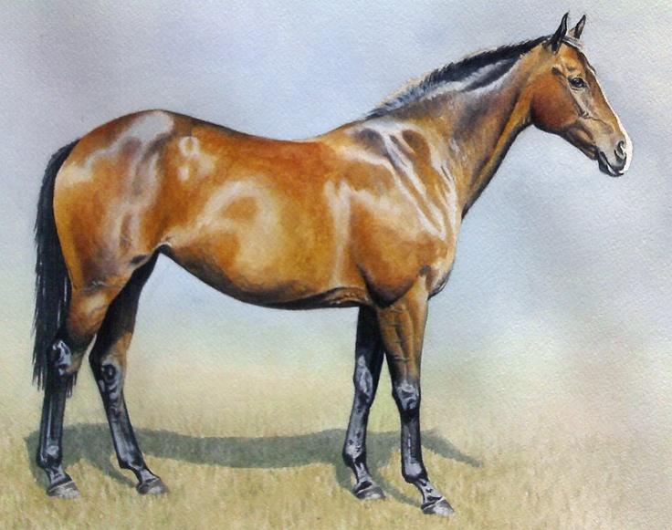 Silk Square Scarf - WILD BEACH HORSES by VIDA VIDA 1lZ7sfjOQo