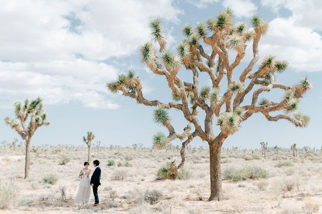 DIY Joshua Tree Wedding
