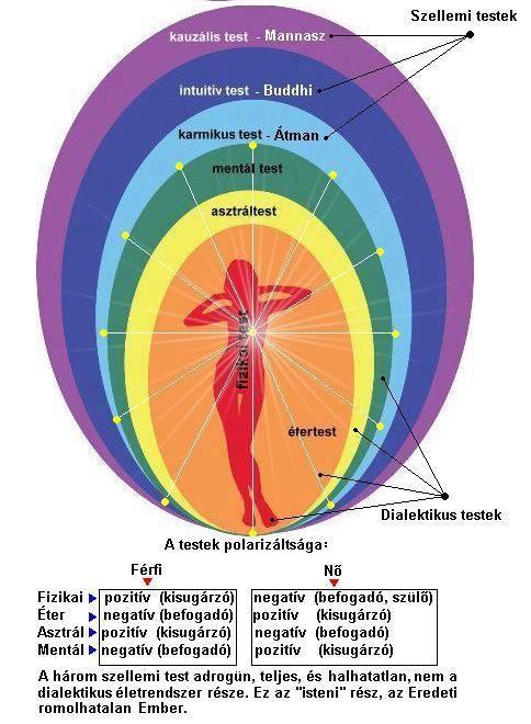 Minden betegség lelki eredetű.A betegség a lélek jelzése,egy intő jel ami elárulja hogy a lélekben megszünt a harmónia.Ezt ugyan mindannyian tudjuk,és érezzük még a fizikai tünet...
