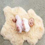 Natural White-ivory Baby Lambskin