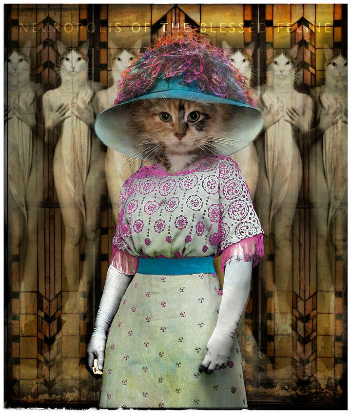 A Night at the Opera / Anthropomorphic cat art