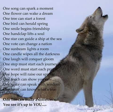 Wolf song