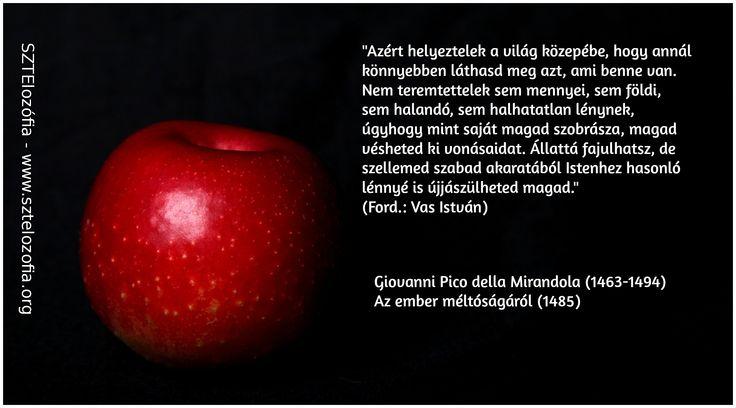 #filozófia #sztelozofia #mirandola