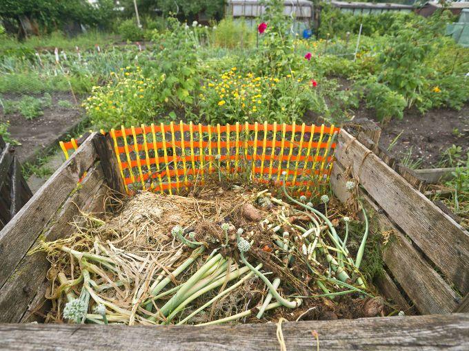 Debemos aprender a elaborar nuestra propia composta para que nuestros jardines, terrazas y balcones se llenan de colores y perfumes, dando sentido a los cuidados de nuestras plantas, árboles y arbustos. Es ahora cuando nuestra dedicación empieza a dar sus frutos.  Además de ser una experiencia fácil y divertida, nos permite producir tierra de alta calidad para las macetas o el jardín de nuestra casa. Encontrarás que es una muy buena forma de reciclar el desperdicio que siempre hay en la…