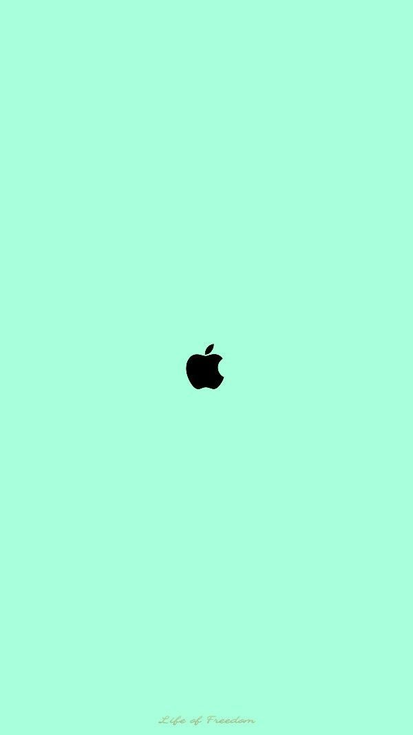 40 Mint Green Wallpaper Backgrounds For Iphone In 2021 Mint Green Wallpaper Iphone Mint Green Wallpaper Green Backgrounds