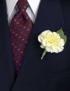 simple carnation boutonniere (though I would use red) William McKinley wore a red carnation as his boutonniere every day that he was President.
