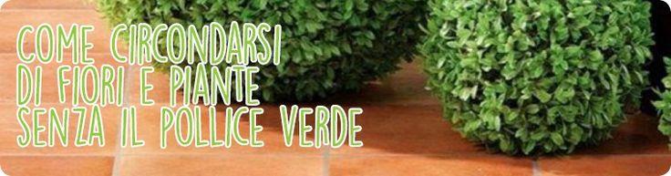 Come circondarsi di fiori e piante senza il pollice verde -Adesso sul nostro blog!