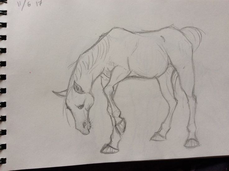Horse; drawings by ArtWolf