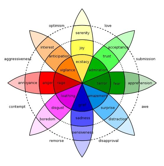 Interior Design Color Wheel Chart Jarrah Jungle Interior Design Course Week 5 Courses