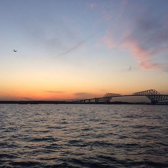 【anniversary_cruise】さんのInstagramをピンしています。 《フィルターなし、編集なしの本物の東京湾🌊  この先にどんな世界があるのかワクワクする景色🛥🔭 #貸切クルージング #東京湾 #東京ゲートブリッジ #クルーズ #船 #海 #サンセット #vonvoyage #cruise #tokyo》