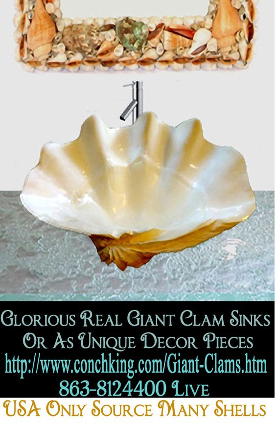 how to clean vhs clam shells