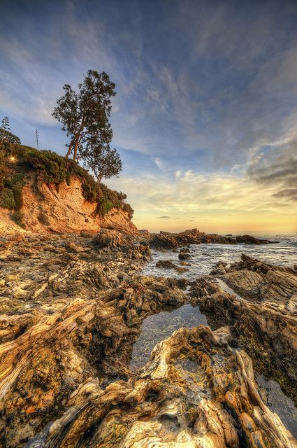 17 Best Images About Corona Del Mar Life On Pinterest