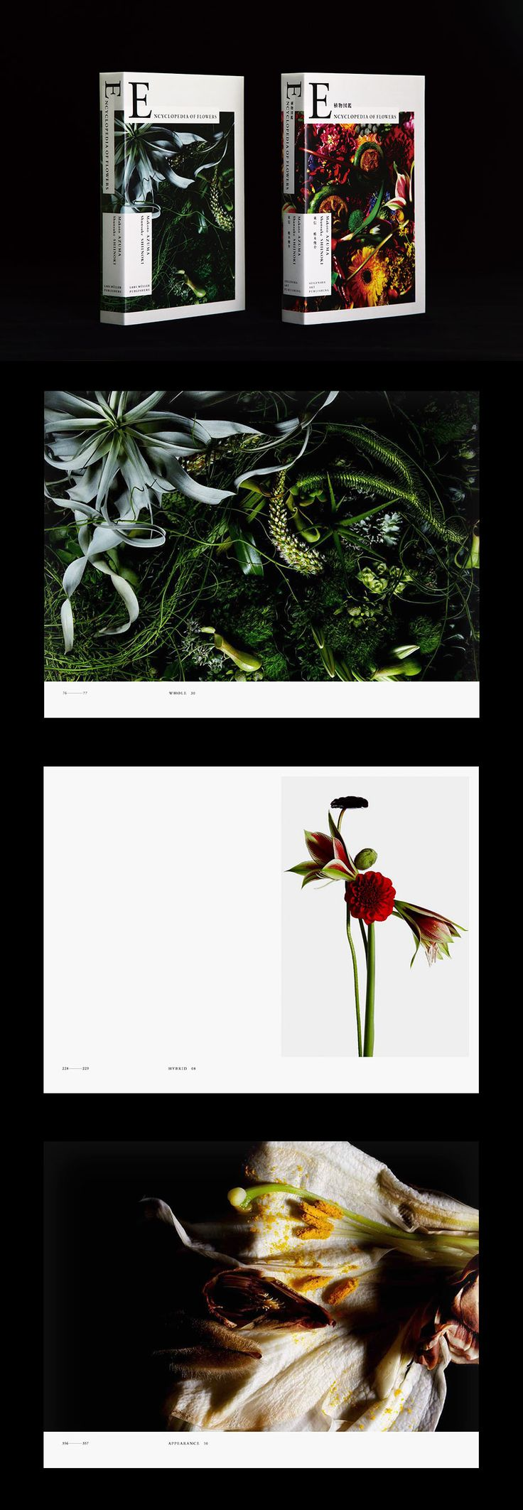 Encyclopedia of Flowers-植物図鑑(青幻舎)Encyclopedia of Flowers(Lars Müller Publishers / 2012年10月発売予定)