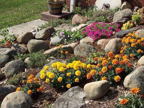Oltre 25 fantastiche idee su progettazione del giardino su - Immagini giardini rocciosi ...