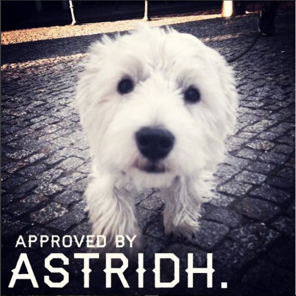 Official approval stamp a la #astridh