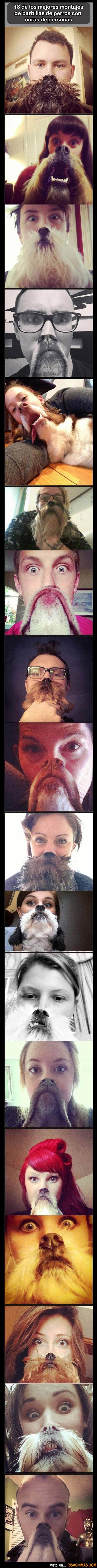 Caras de personas con barbillas de perros.