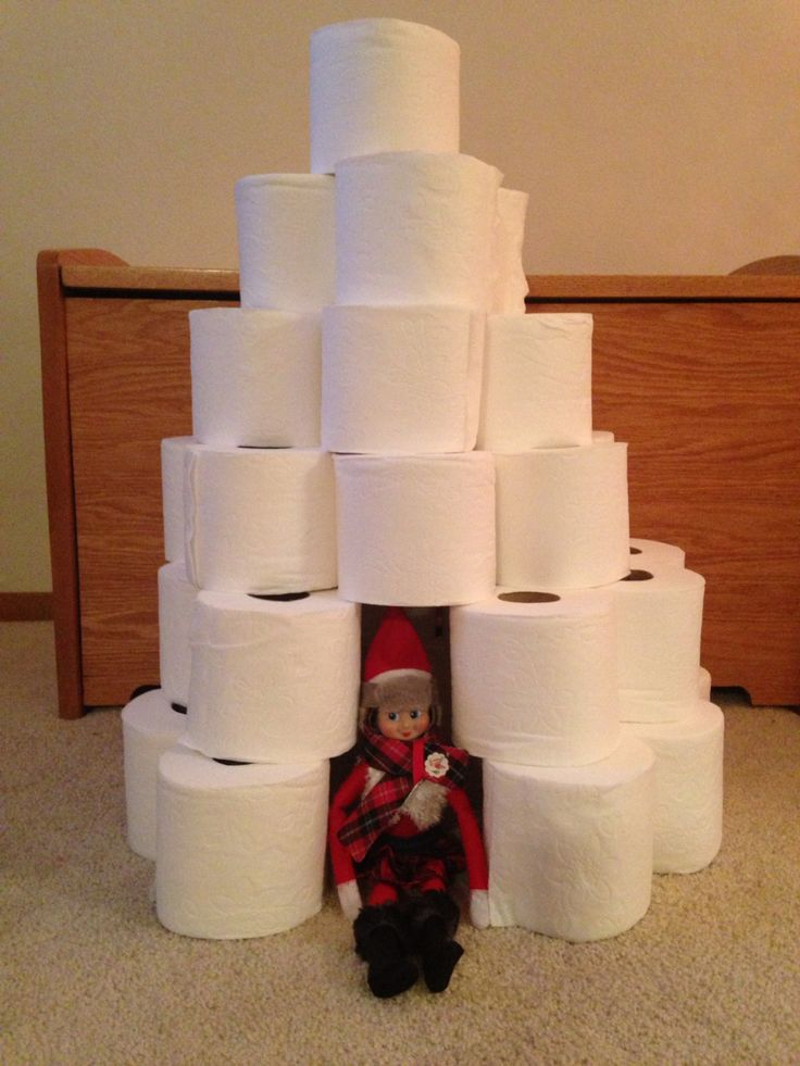 Day 23 2015 Sprinkle Made Herself On Igloo With Rolls