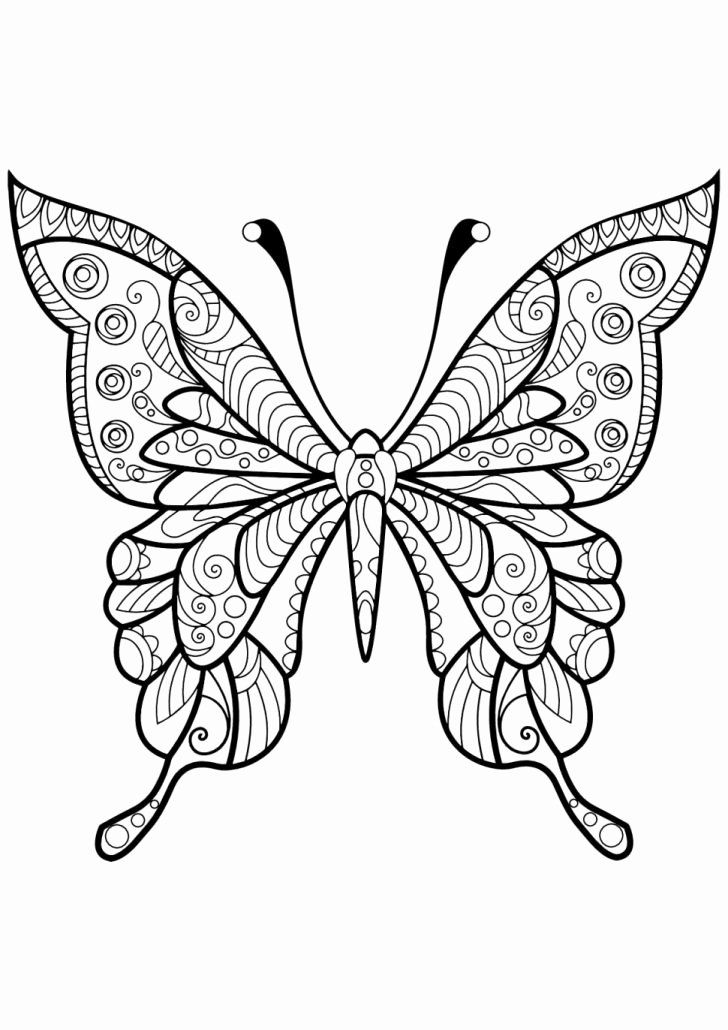 Butterfly Coloring Book Tips