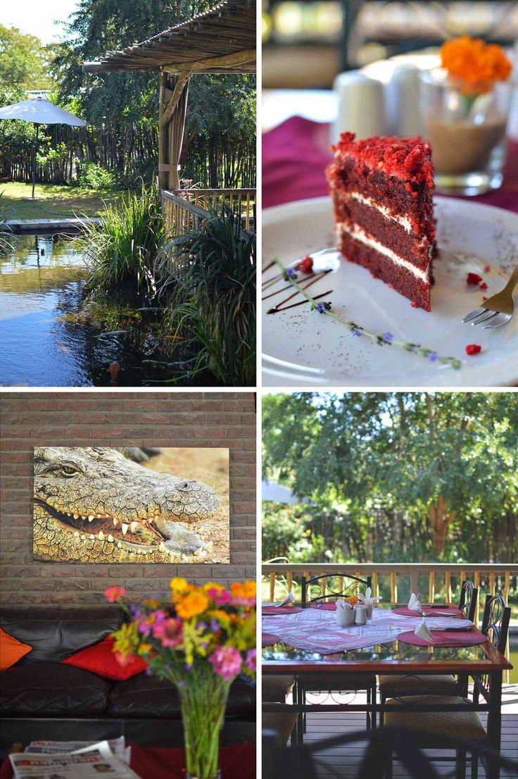 Crocodile Ranch, Otjiwarongo, Namibia   heneedsfood.com
