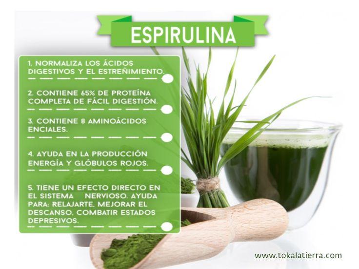 Descubre los beneficios del alga espirulina visita: www.tokalatierra.com/    #espirulina #comprarespirulina #superfoods #superalimentos #tokalatierra
