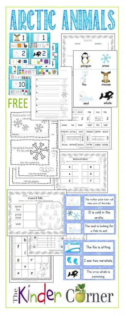 Arctic Animals Collection:  Includes TONS of resources for your kindergarten classroom!  All free!!!  missing letters, math, reading, write the room & more!