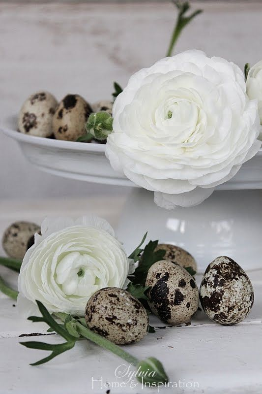 Elegant Easter eggs covered in black lace. Pastel lace would be pretty too.