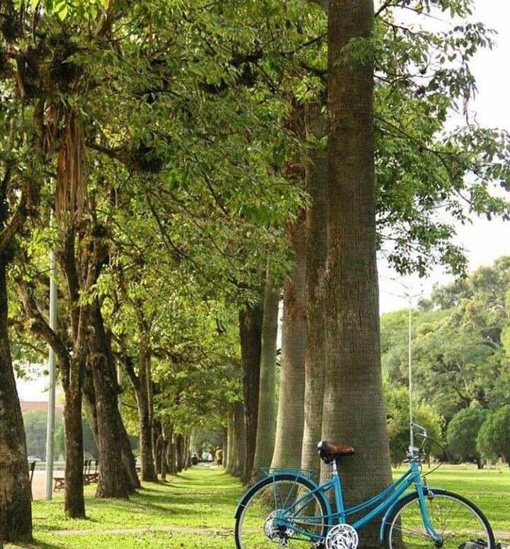 Parque Farroupilha (Redenção) em Porto Alegre, RS