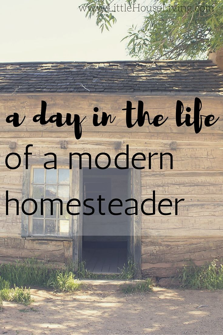 Follow along in the day of the life of a modern homesteader....