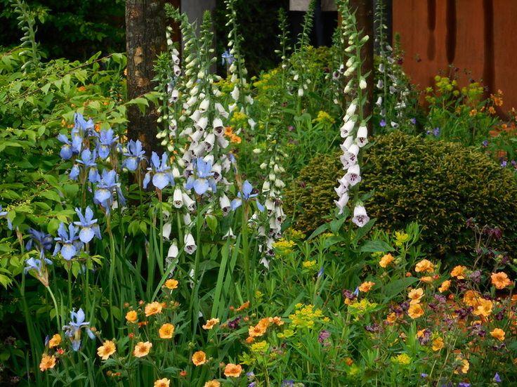 Country Landscape Chelsea Flower Show 2015   The Homebase Urban Retreat  Garden