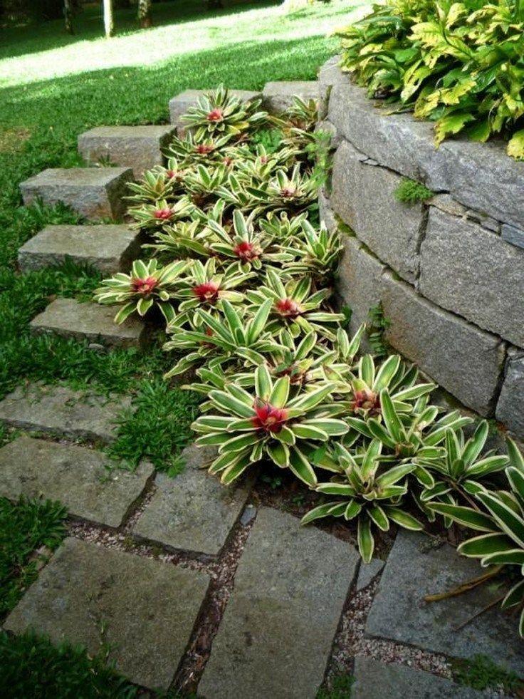 ✔38 lindas idéias de paisagismo no jardim da frente com plantas tropicais 7   – Frontyard Ideas