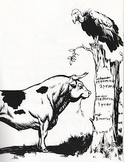 Robert Lawson - Ferdinand the Bull
