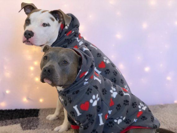 I 3 Paw Dog Pajamas Dog Sweater Dog Pjs Dog Sweatshirt Dog