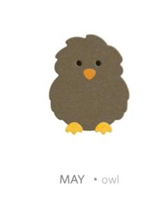 QuicKutz Lifestyle Craft Limited Edition Single Club Die 2x2 ~ OWL Baby, DP0491 #LifestyleCraftsQuicKutz