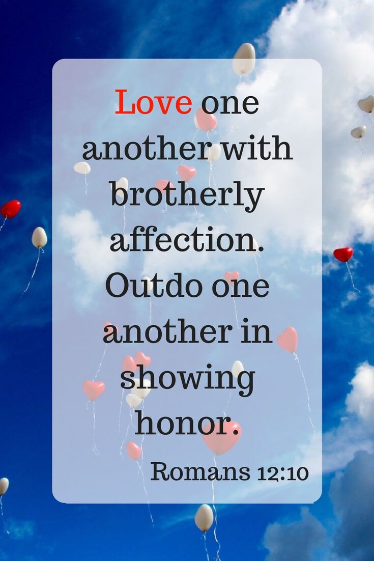 Love One Another Love One Another Bible Inspirational Scripture Easy Bible Study