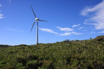 The Albany Wind Farm is one of the most spectacular and largest wind farms in Australia. The wind farm walk offers spectacular views of the twelve eco-friendly turbines along the Torndirrup peninsula. The turbines lower WA's greenhouse gas emissions by approximately 77,000 tonnes per year.