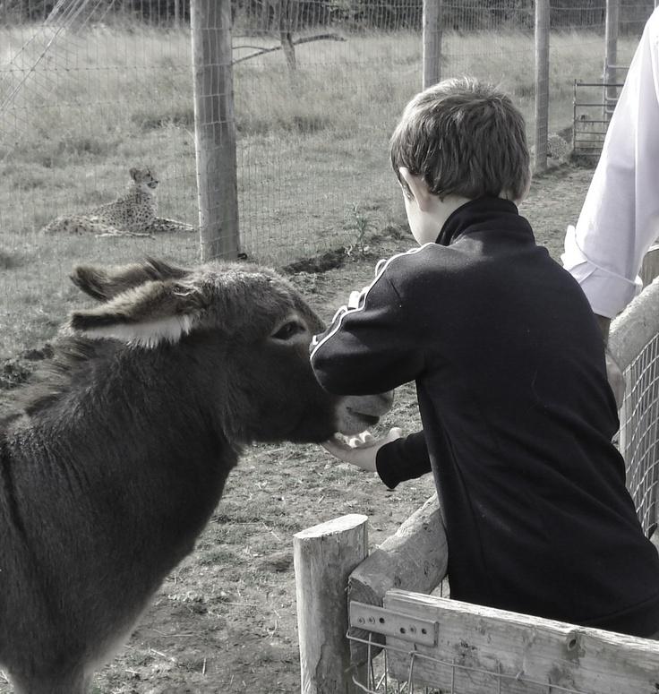 Hammerton Park Zoo
