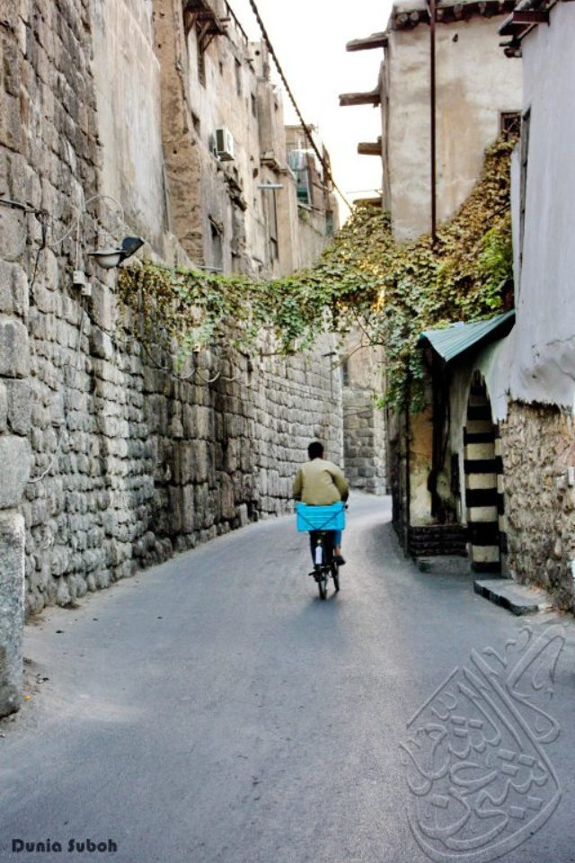 Mejores 388 im genes de siria damasco la ciudad mas - Fotos de damasco ...