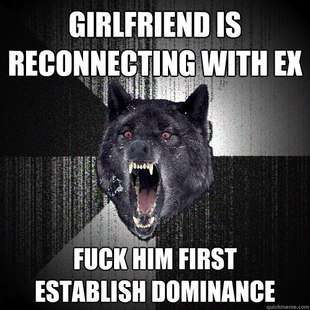Insanity Wolf Meme... Yes, that will surely solve the problem.