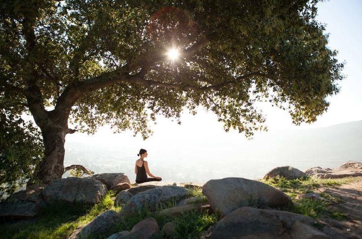 RETURN. RECONNECT. REJUVENATE: A Holistic Retreat Rancho La Puerta, Mexico March 19-22, 2014
