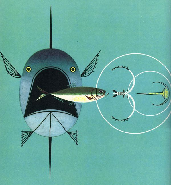 25 best ideas about charley harper on pinterest for Charley s fishing