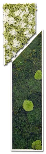 Slim - Stabilized #Plants and #Flowers - #Moss, ball moss, #mint green/white #hydrangeas - by #LinfaDecor