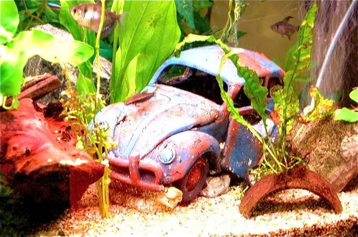 vw bug fish tank | For Sale VW Oval Beetle Wreck - Fish Tank Ornament for sale - VZi ...