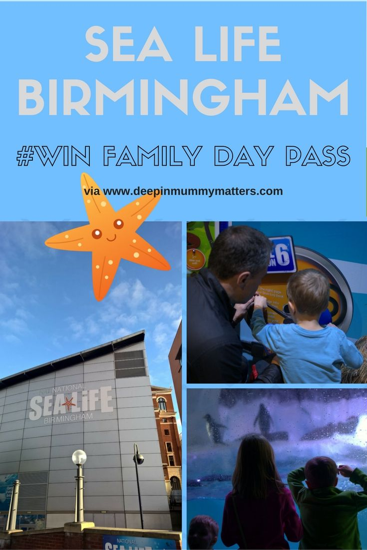 Looking for a fun family day out in Birmingham then head down to Sea Life Centre.  I'm giving away one Family Day Pass.  Click on the link for details. (scheduled via http://www.tailwindapp.com?utm_source=pinterest&utm_medium=twpin&utm_content=post114363941&utm_campaign=scheduler_attribution)