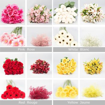 Costco flowers! 126 stems for $149 | One-Colour Flower Mélange Bulk Pack