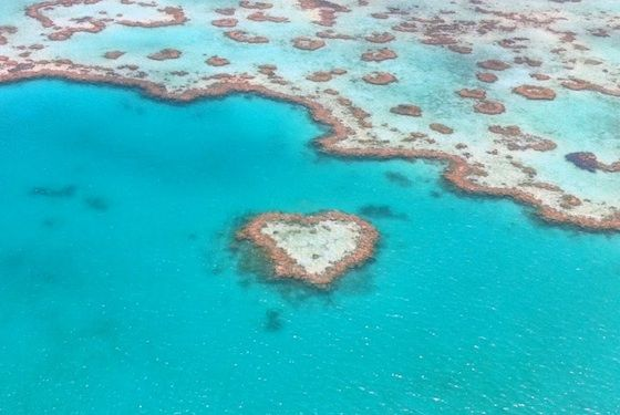 We heart the Whistundays. Hart Reef