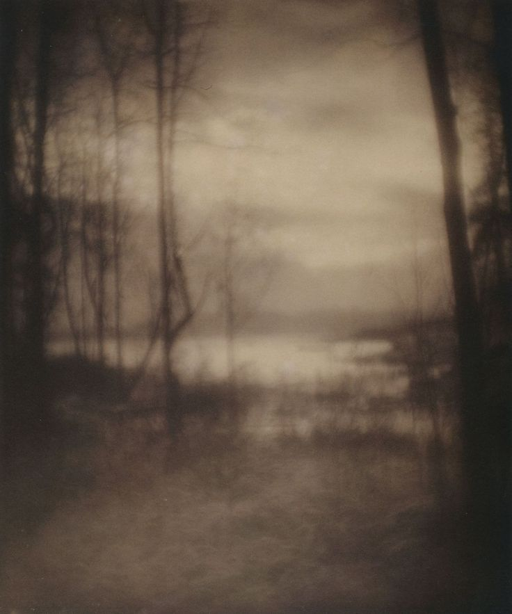 Imogen Cunningham      Marsh, 1901      From Truth Beauty: Pictorialism and the Photograph as Art, 1845 -1945
