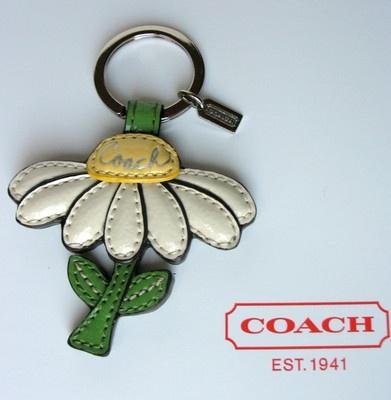 Coach Daisy