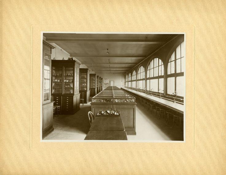 Paris Claude Bernard, laboratoire de géologie, photographie ancienne / © Musée du Vivant - AgroParisTech