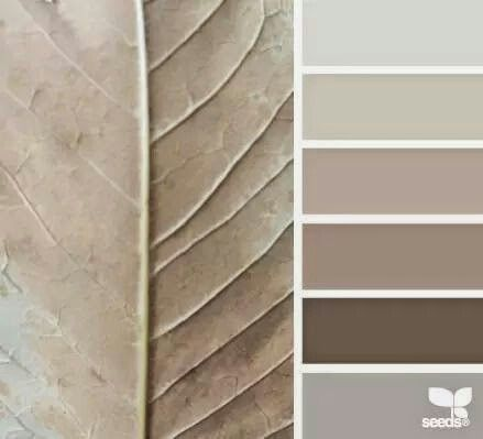 Shades of grey and taupe