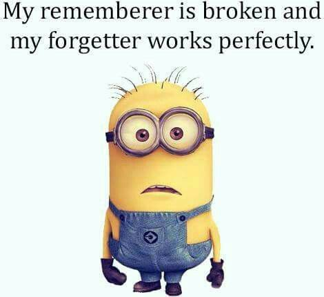 "。◕‿◕。 My rememberer is broken and my forgetter works perfectly. ""Yep, this is so me!"""